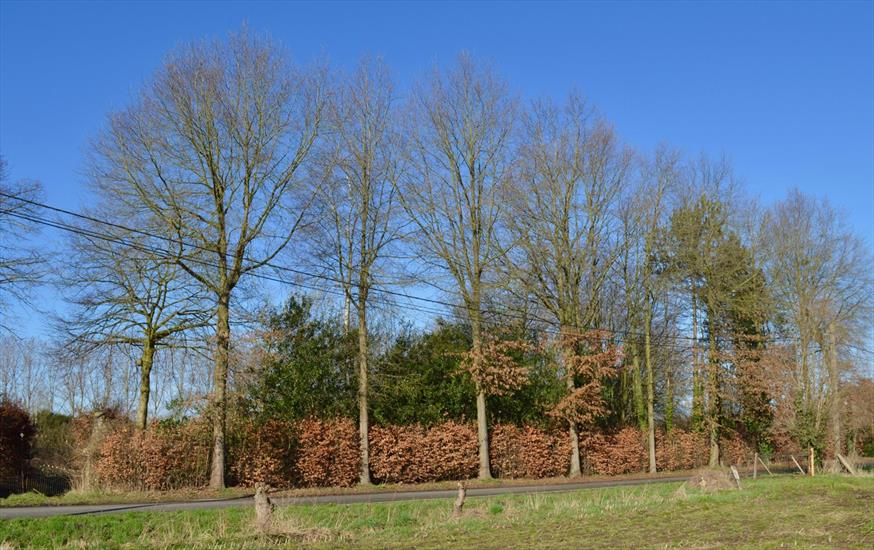 Land sold in Destelbergen