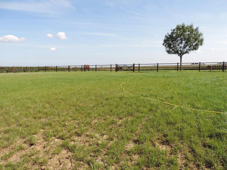 Farm sold in Ulestraten