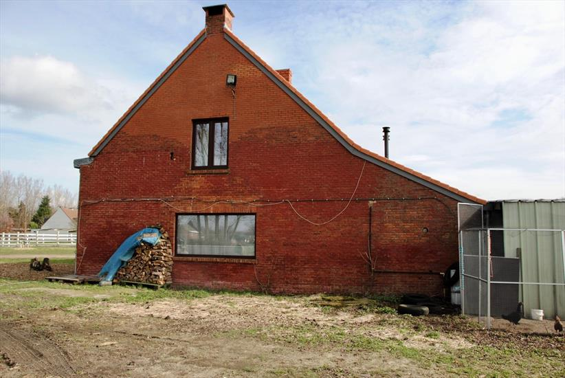 House with stables on approximately 45a in Oelegem, possibility to buy 1,5ha