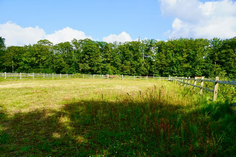 Land for sale in Retie