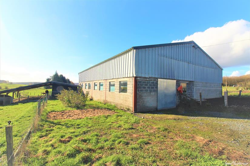 Farm for sale in Libramont