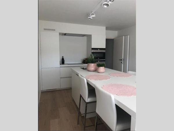 Beautifully renovated 2 bedroom apartment