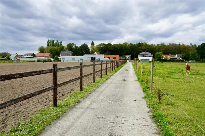 Two-family house with stables, shed and pasture on approximately 2,28ha in Sint-Katelijne-Waver